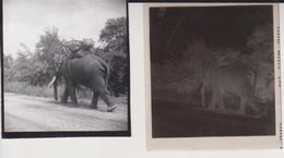 Thailand   Cynthia Ellis Celluloid Photographic Negative Contact Photographs Asia - Places