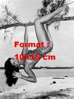 Reproduction D'une Photographie Ancienne De Bettie Page En Tenue De Tarzan Suspendue à Un Arbre  En 1954 - Reproductions