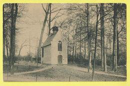 * Laken - Laeken (Brussel - Bruxelles) * (Cliché F. Walschaerts, Nr 87) Chapelle Ste Anne, Kapel, Bois, Parc, Rare - Laeken