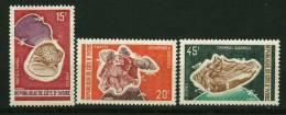 Rep. Côte D'Ivoire ** N° 337 à 339 - Coquillages - Ivory Coast (1960-...)