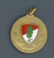 °°° Medaglia No Vi è Sosta Se Non Sulla Cima/comando Divisione Fanteria Avellino °°° - Italia