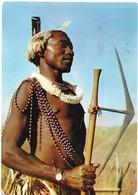 Swaziland Swazi Warrior - Swaziland