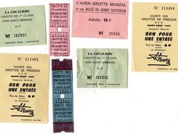 Lot De 9 Tickets D'entrée  - Visites  De Grottes - Tickets - Vouchers