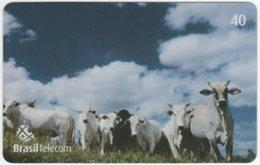 BRASIL G-798 Magnetic BrasilTelecom - Animal, Cow - Used - Brasilien