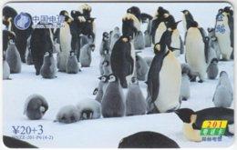 CHINA B-251 Prepaid ChinaTelecom - Animal, Penguin - Used - China