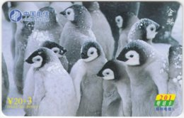 CHINA B-253 Prepaid ChinaTelecom - Animal, Penguin - Used - China