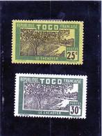 B - 1924 Togo - Piantagione Di Cacao (linguellati) - Togo (1914-1960)