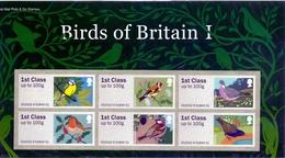 2010  P&G  1st Birds - Gran Bretagna