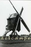 TONGERLO - Westerlo (Antwerpen) - Molen/moulin - Fraaie Opname Van De Verdwenen Oosterwijkmolen Opgezeild En In Werking - Westerlo