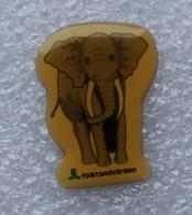 Pin's éléphant . Folktandvarden - Animals