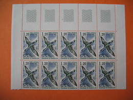 TAAF   1976   N° 59  Par 10  Neuf ** - French Southern And Antarctic Territories (TAAF)