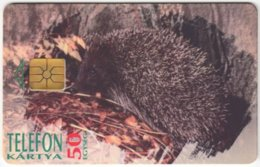 HUNGARY E-563 Chip Matav - Animal, Hedgehog - Used - Hungary