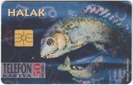HUNGARY E-591 Chip Matav - Signs Of Zodiac, Pisces - Used - Hungary