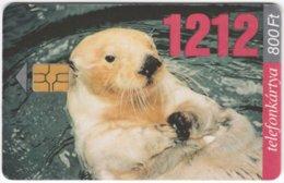 HUNGARY E-642 Chip Matav - Animal, Sea Otter - Used - Hungary