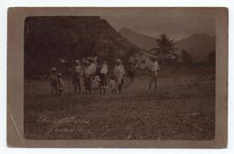 ILE DOMINIQUE - CARTE PHOTO  - BOIS D'INDES / GRAND BAY - Dominique