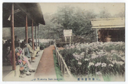 CPA Asie Japon Tokyo Kamata Iris Garden 東京 - Tokio