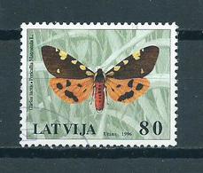 1996 Letland Papillon,vlinder,schmetterlinge Used/gebruikt/oblitere - Letland