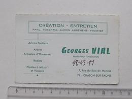 CHALON-SUR-SAONE (71): Publicité Ancienne Carte De Visite HORTICULTEUR PEPINIERISTE VIAL Rue Du Bois De Menuse - Publicités