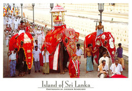 Sri Lanka Postcards, Kandy, UNESCO, Elephants, People, Postcrossing - Sri Lanka (Ceylon)