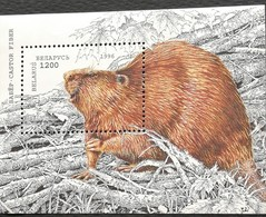 Belarus 1996 Beaver S/S - Belarus