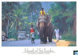Sri Lanka Postcards, Elephants, People, Postcrossing - Sri Lanka (Ceylon)