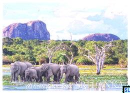 Sri Lanka Postcards, Yala National Park, Elephants, Postcrossing - Sri Lanka (Ceylon)