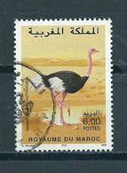1998 Marokko Ostrich,struisvogel,birds Used/gebruikt/oblitere - Marokko (1956-...)