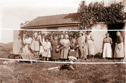 BISSEUIL VIGNERONS VENDANGES  ANNEES 1900 TIRAGE MODERNE D APRES PLAQUE ANCIENNE - France