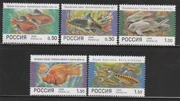 RUSSIE - N°6332/6 **  (1998)  Poissons - Ungebraucht