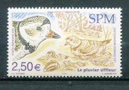 10791 SAINT-PIERRE Et MIQUELON  PA85 ** 2€50  Les Grands Migrateurs : Le Pluvier Siffleur  2005 TTB - Airmail