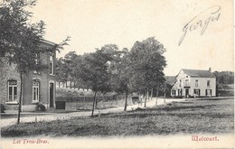 Walcourt NA26: Les Trois-Bras 1907 - Walcourt