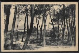 CPA 29 - Trégunc, Rouz-en-Gall - Trégunc