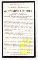 DP Cesarine A. Roose ° Ieper 1871 † 1928 X Henri Lowagie - Devotion Images