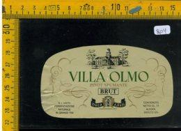 Etichetta Vino Liquore Spumante Pinot Brut Villa Olmo Calamandrana Asti - Etichette