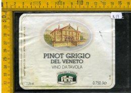 Etichetta Vino Liquore Pinot Grigio Del Veneto - Etichette