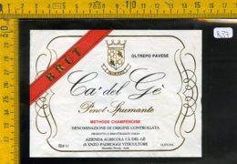 Etichetta Vino Liquore Spumante Pinot Cà Del Gè Montalto Pavese - Etichette
