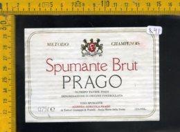 Etichetta Vino Liquore Spumante Brut Prago S. Maria Della Versa - Etichette