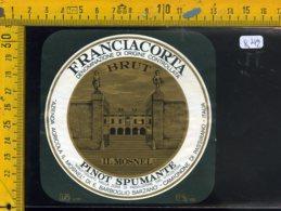 Etichetta Vino Liquore Spumante Pinot Franciacorta Camignone Di Passirano - Etichette