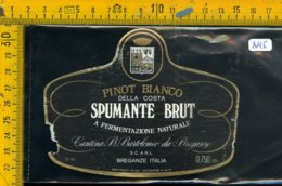 Etichetta Vino Liquore Spumante Brut Pinot Bianco Breganze - Etichette