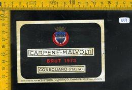 Etichetta Vino Liquore Spumante Brut 1973 Carpene Malvolti Conegliano - Etichette