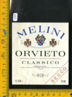 Etichetta Vino Liquore Orvieto Melini Pontassieve - Etichette