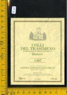 Etichetta Vino Liquore Colli Del Trasimeno 1987 Magione - Etichette