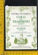 Etichetta Vino Liquore Colli Del Trasimeno 1974 Pucciarella Magione - Etichette