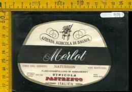 Etichetta Vino Liquore Merlot  Vinicola Pastrengo Verona - Etiquettes