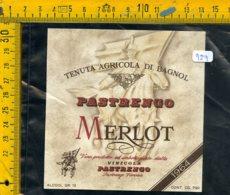 Etichetta Vino Liquore  Pastrengo Merlot Verona - Etiquettes