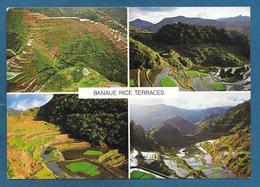 PILIPINAS FILIPPINE 1995 BANAUE RICE TERRACES - Filippine