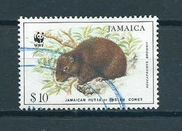 1996 Jamaica WWF $10 Animals,dieren Used/gebruikt/oblitere - Jamaica (1962-...)
