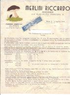 B2064 - FATTURA CARTA INTESTATA MERLINI - VERONA - FUNGHI PORCINI DEL TRENTINO - IMPOSTA SULL'ENTRATA VENDITA 1946 - Italie