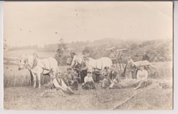 CARTE PHOTO : PAYSANS ET OUVRIERS AGRICOLES - ATTELAGE DE CHEVAL TIRANT UNE MOISSONNEUSE - 2 SCANS - - Landbouw