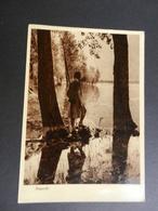 19855) CARTOLINA ARTISTICA FOTOGRAFICA RISPECCHI SUL LAGO NON VIAGGIATA - Photographie